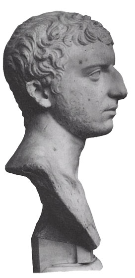 Marble Bust In Profile.